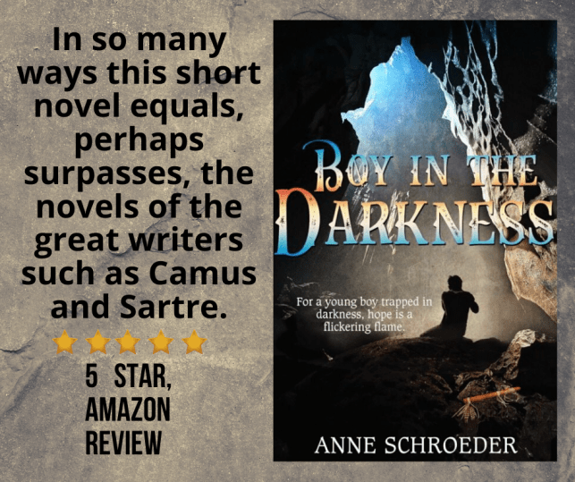 Boy in the Darkness by Anne Schroeder