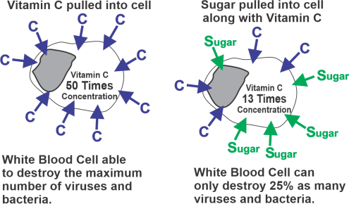 Sugar & Immune System-fig2