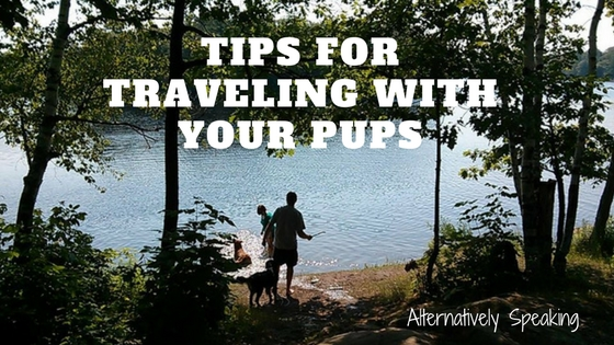 Tips for Traveling with your Pups