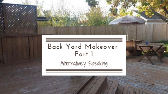Backyard Makeover Part 1