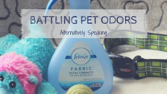 Battling Pet Odors