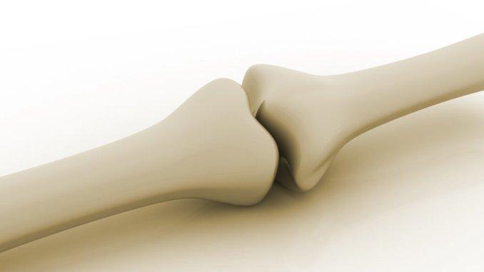 exercises to improve your bones health