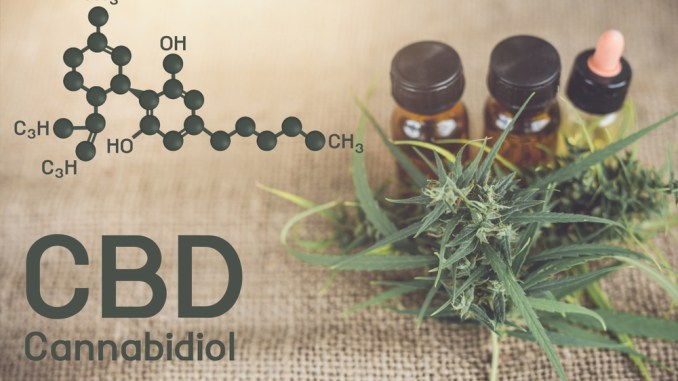 5 Factual and Study-Based Heath Advantages of CBD Oil