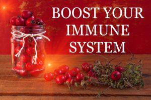 Looking to improve your immune system?