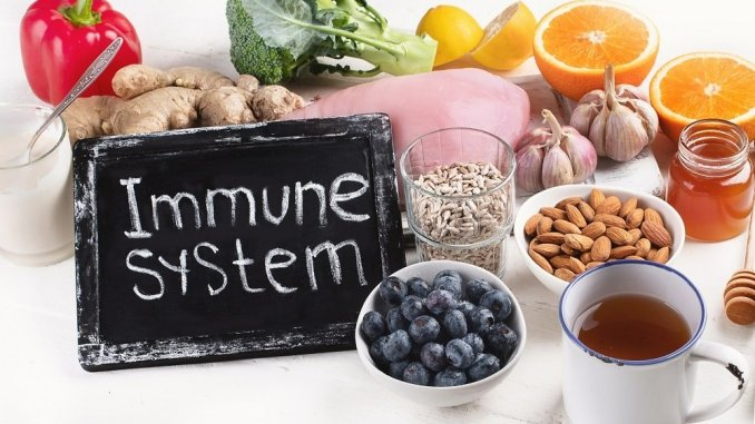 foods to support immunity