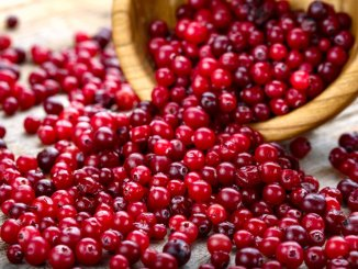 cranberry has many health benefits