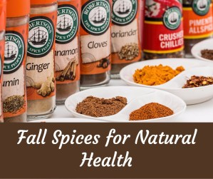 Fall Spices to Use for Health Purposes