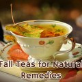 Fall Teas to Use as Natural Remedies