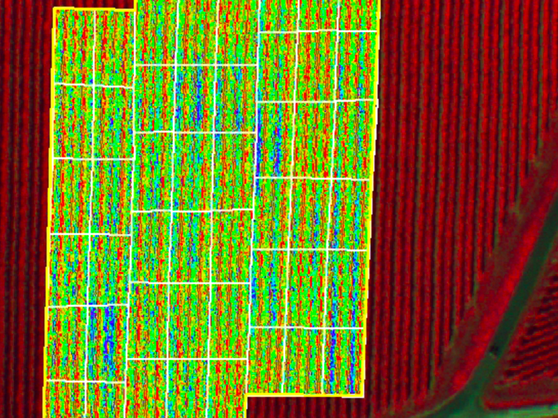 altigator drone uav agriculture ndvi nir crop yield management multispectral 2 - Applications pour drones