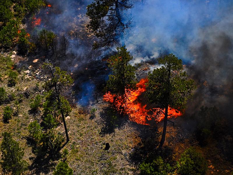 altigator-drone-catastrophe-lutte-incendie-pompier