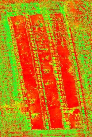 Orthophoto NDVI obtenues à l'aide du XENA, de l'Optris PI450 et d'Agisoft PhotoScan Pro