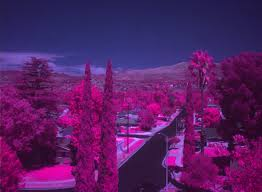 Multispectral image - Tetracam