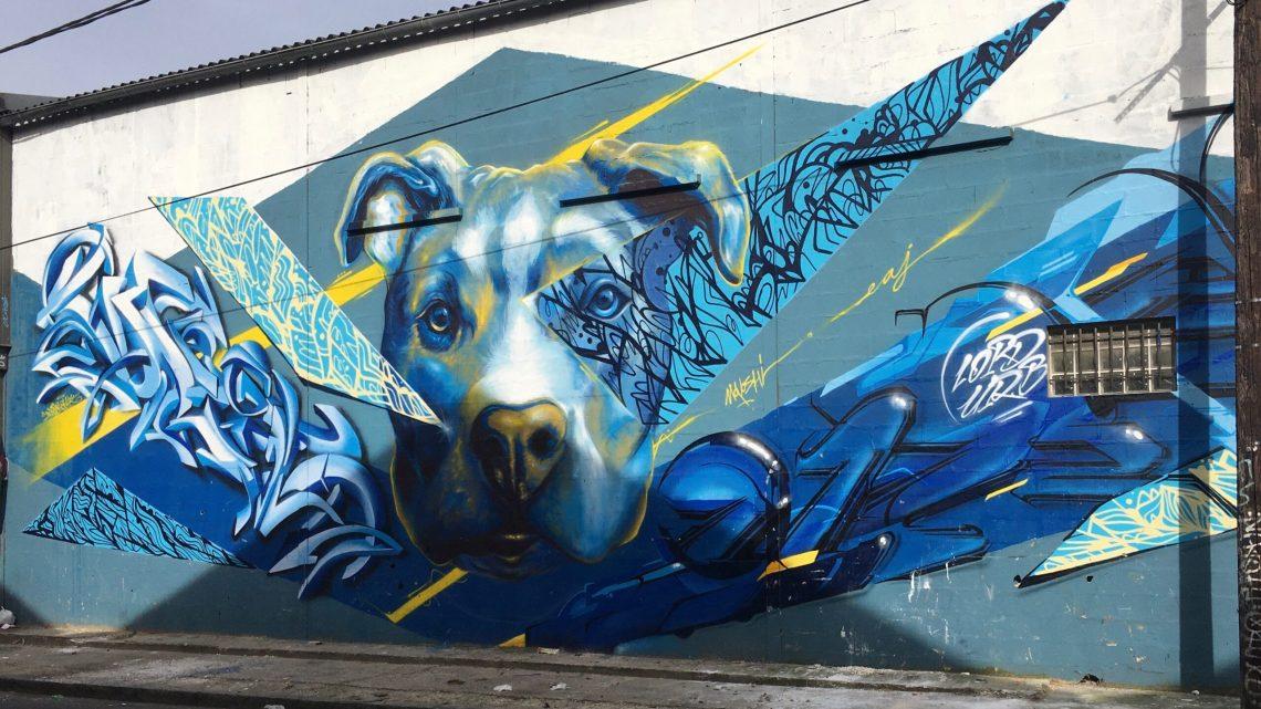 Un concentré de Street Art à Aubervilliers qui réveille les sens ! Spot à voir absolument !