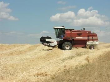 Agriculture - Buena Vista - Altizer Law