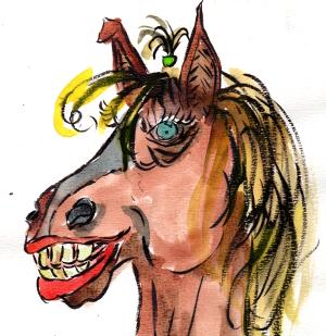 PferdTitelbild