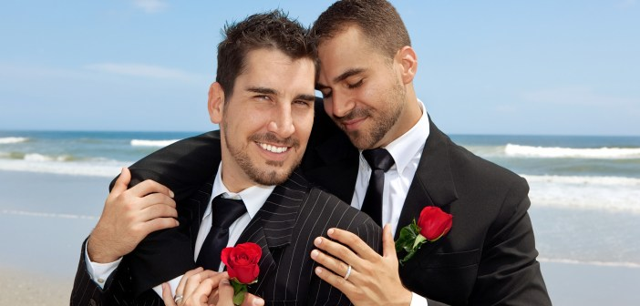 Gay marriage guys