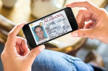 Alabama drivers license
