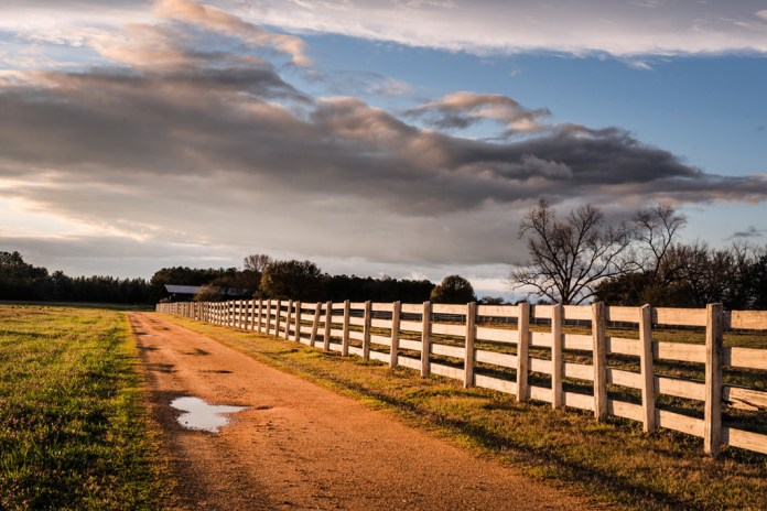 Rural country Road in Alabama