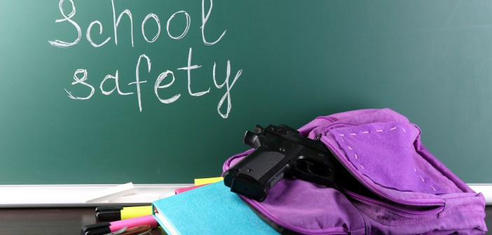 school safety guns