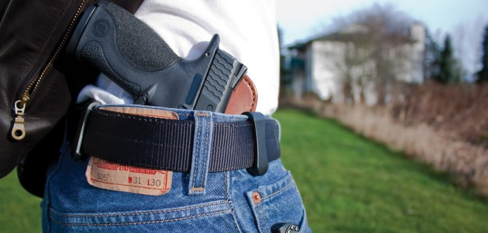 concealed carry gun