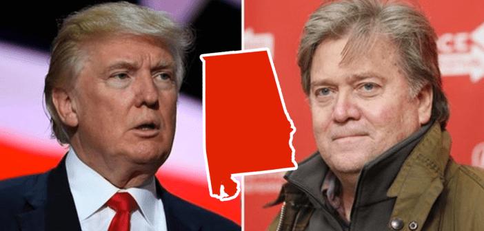 Trump Bannon Alabama