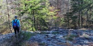 Alabama hiking Moss Rock Preserve