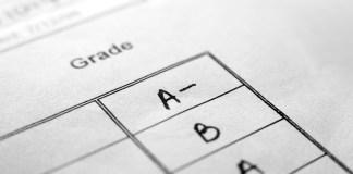 grades, report card