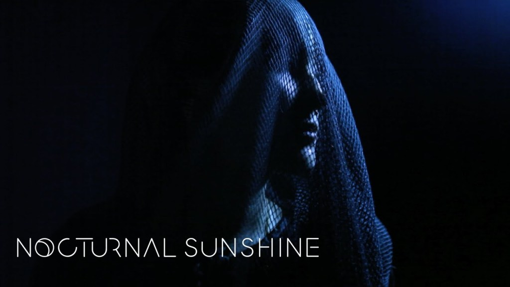 Nocturnal Sunshine – Take Me There