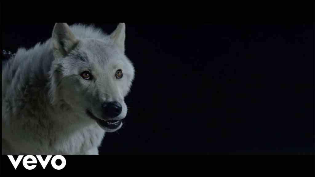 The Kills – Siberian Nights