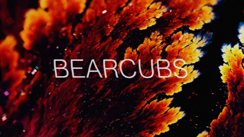 Bearcubs – Underwaterfall
