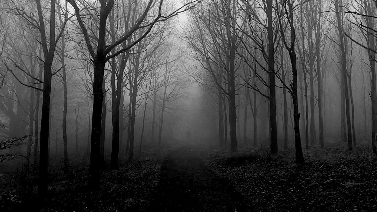 Trentemøller – Foggy Figures