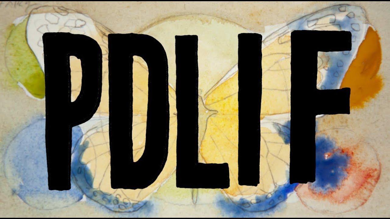 Bon Iver – PDLIF