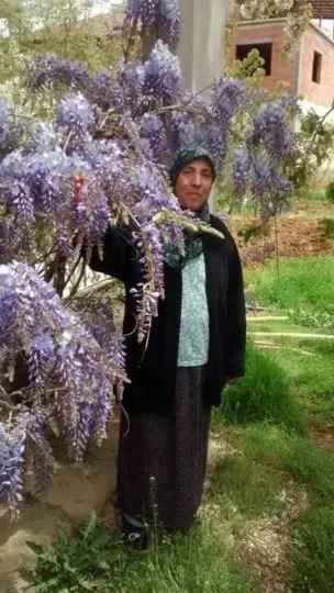 Mustafa Gedik in annesi fatma gedik