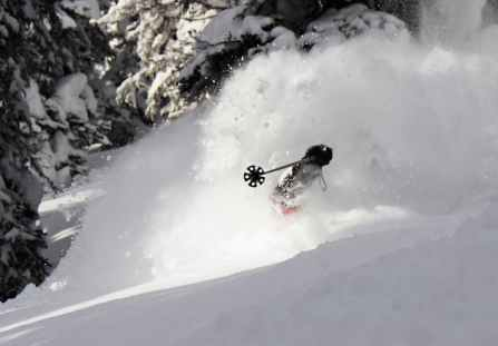 Image result for deep powder skiing