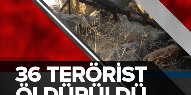 Şırnak ve Hakkâri'de 36 terörist öldürüldü.