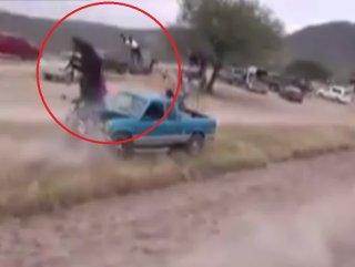 Meksika'da araca çarpan at öldü