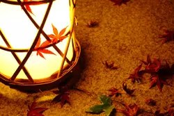 一人暮らしのひとときを贅沢に! 秋の夜長をゆったりと楽しむ過ごし方