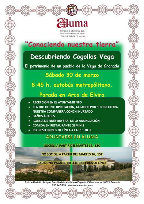 Cogollos Vega_Page_1