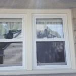 Vinyl Windows