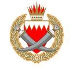 البحرين تكشف عن خلية من 10 أشخاص يشتبه بتورطهم في تنفيذ أعمال إرهابية