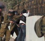 نادي الأسير الفلسطيني: قوات الاحتلال الإسرائيلي تعتقل 19 فلسطينيا