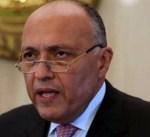 مصر: ننتظر من شركائنا تبني استراتيجية جادة لمحاربة الإرهاب