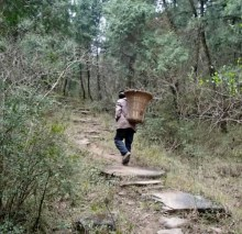 Man carrying wood along ancient Chinese road