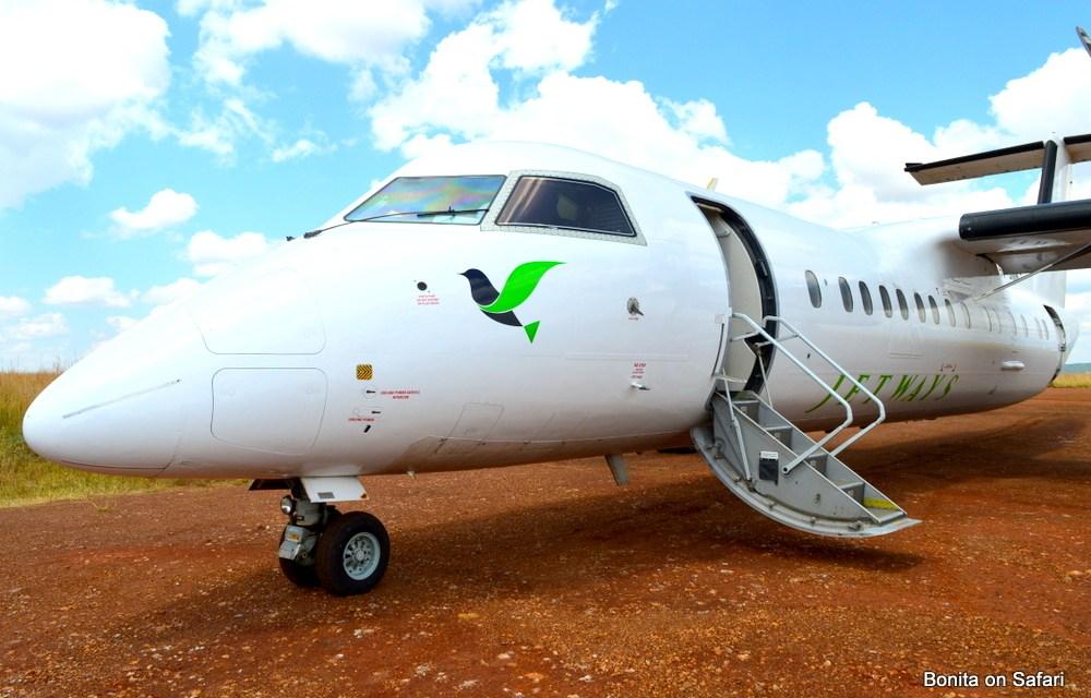 Explore Maasai Mara with Jetways Airline-Kenya