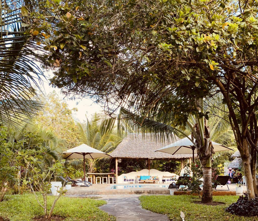 Bonita on safari Diani