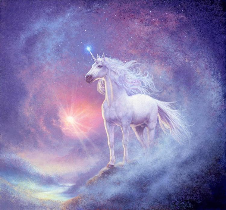 astral-unicorn-steve-read