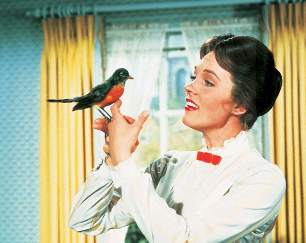 Semnează pentru maidanezi + Marry Poppins