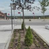 Parque Simón Pedro 1