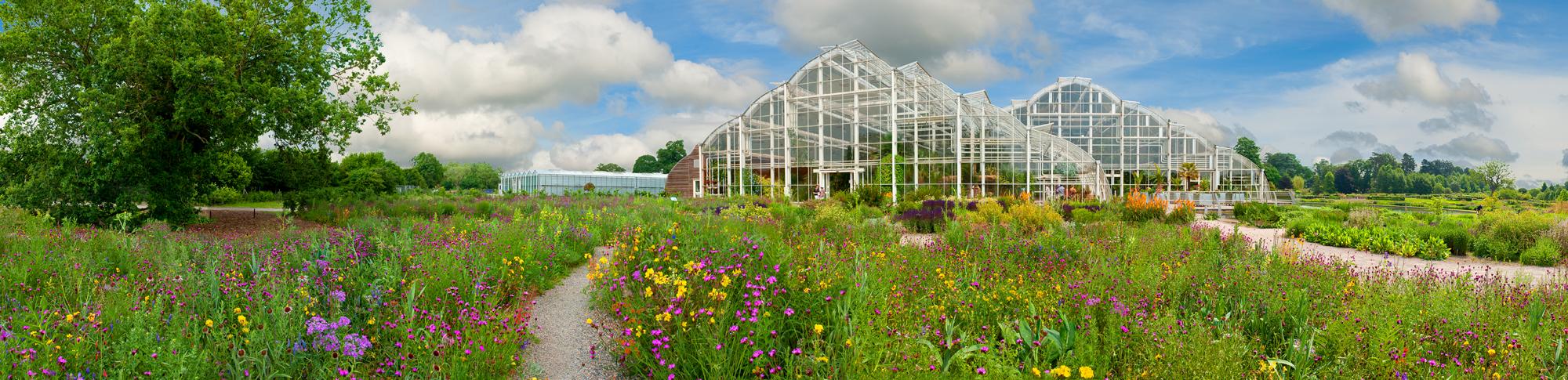 Las garantías de RHS, un seguro para tus plantas
