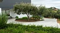 Jardinera con dos encinas en la entrada a la vivienda
